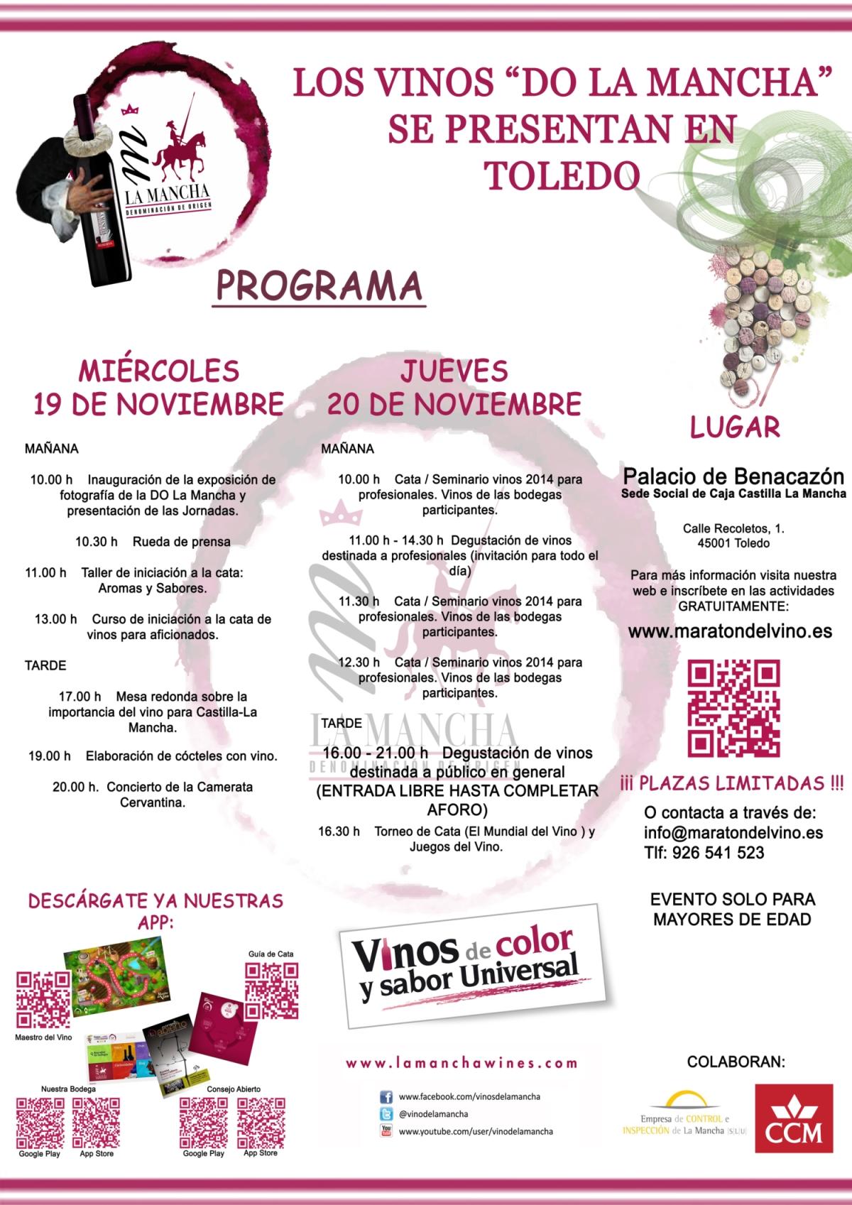 Cartel Maratón del vino en Toledo 2014