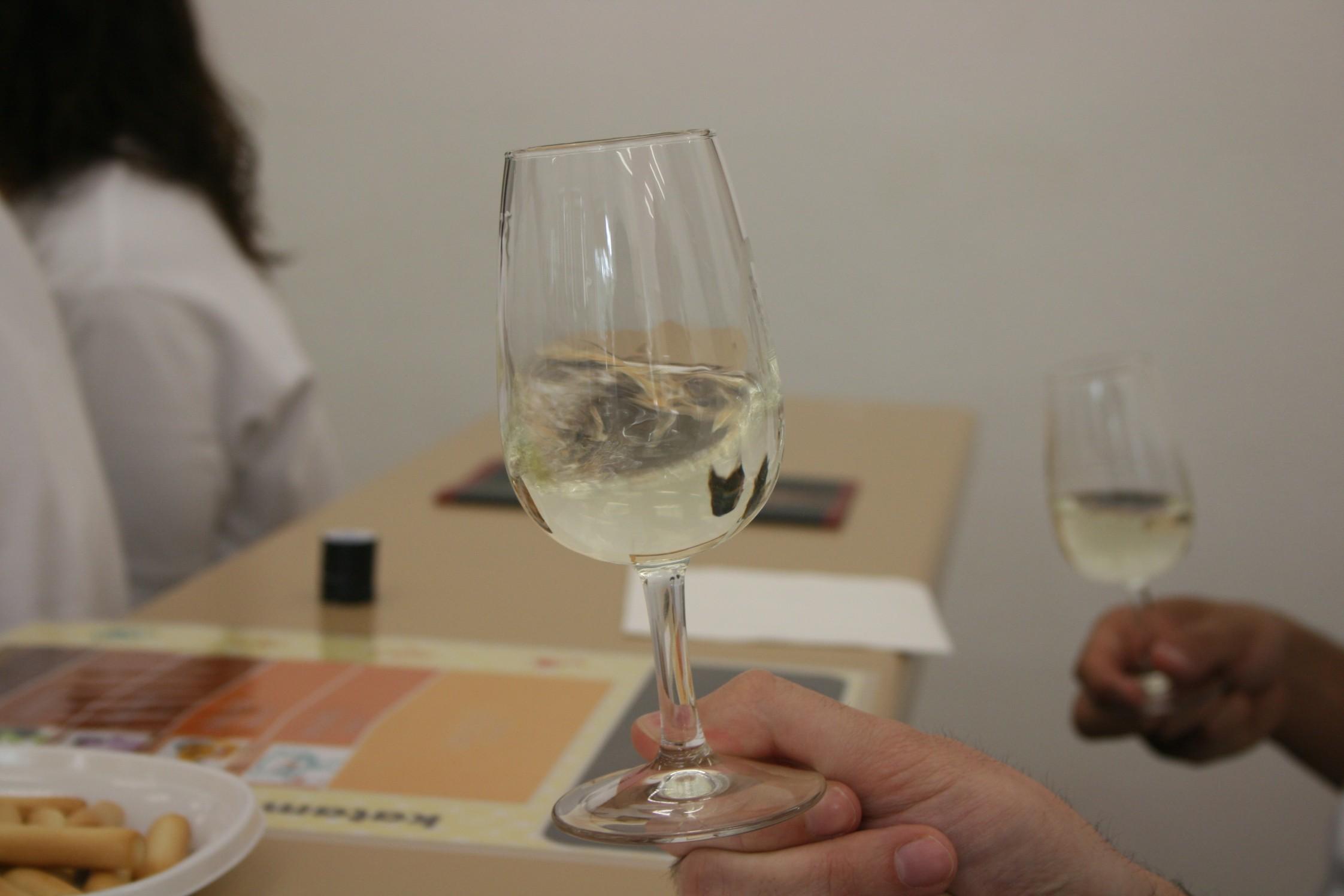 El Maratón del vino, destino Albacete