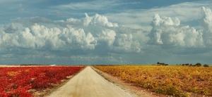 Paisaje nublado en La Mancha